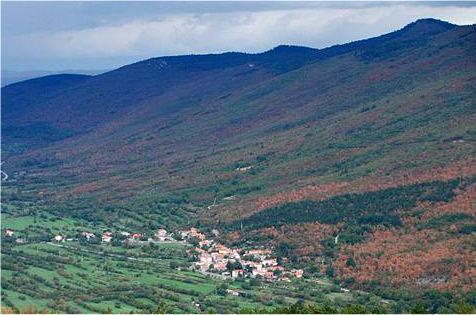 Podgorje-Slavnik