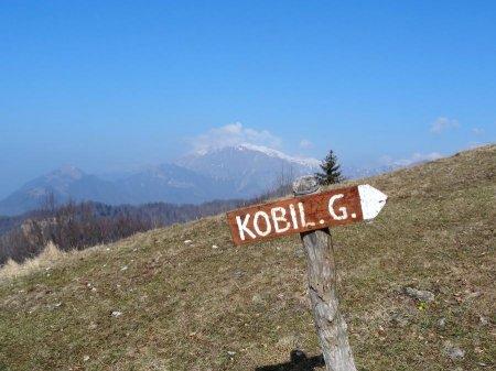 kobilG